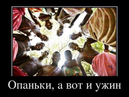 Воскресные демотиваторы