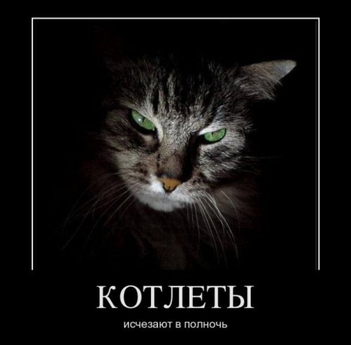 http://www.bugaga.ru/uploads/posts/2011-11/thumbs/1322475198_demo-11.jpg
