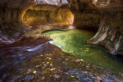 Туннели Национального парка Зайон