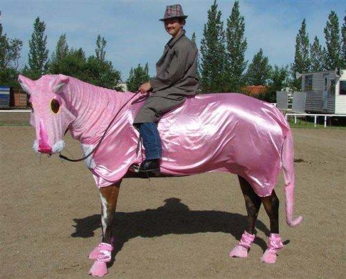 Странные лошадиные костюмы