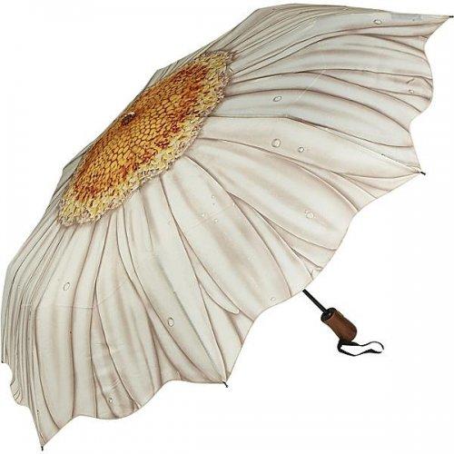 Прикольные зонтики на любой вкус