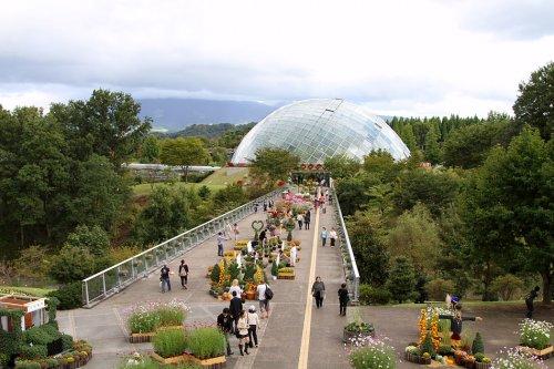 Японский парк цветов Тоттори