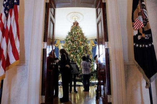 Рождественские елки с разных уголков планеты