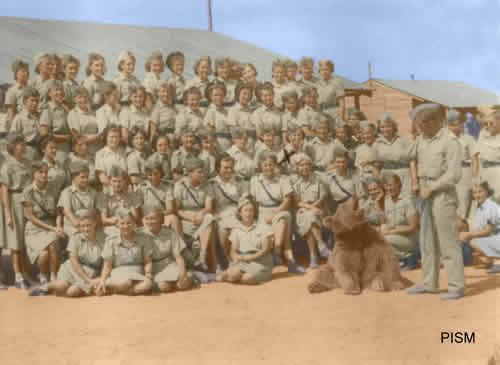Войтек - медведь-солдат