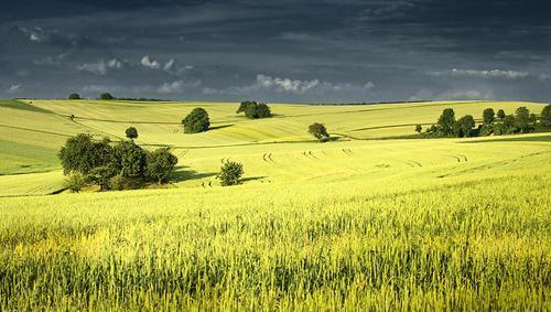 Красивые пейзажи от Денниса Фишера