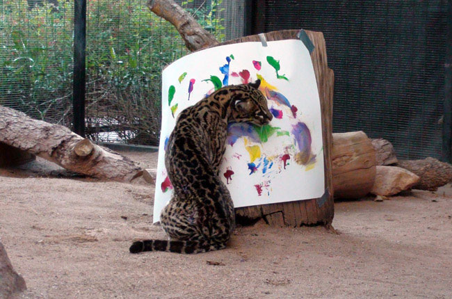 Художники которые рисуют животных
