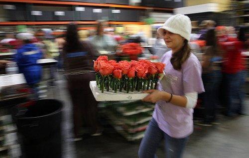 123-ий ежегодный Парад роз
