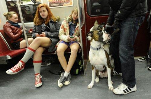 В метро в нижнем белье
