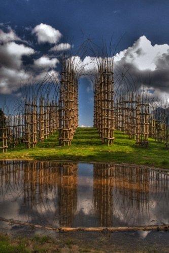 Храм из растущих деревьев в Италии