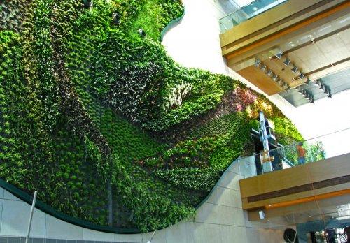 Самые удивительные вертикальные сады