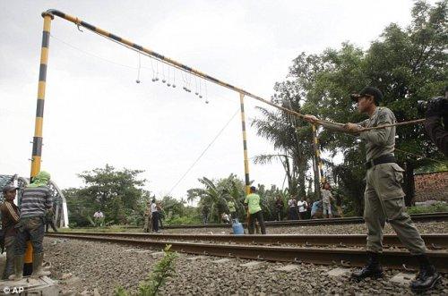 """Как власти Индонезии борятся с """"зайцами"""""""