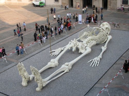 Скульптура Calamita Cosmica