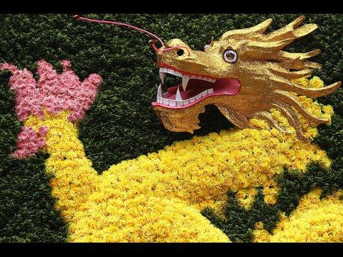 Фестиваль цветов на острове Сентоза