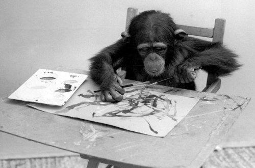 Топ-10: известные животные-художники