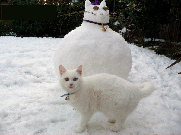 Животные из снега фото