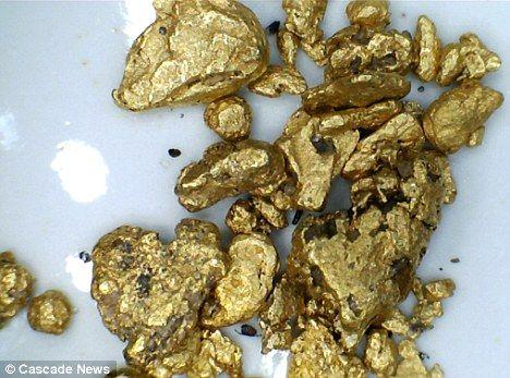 Сам добыл золото для обручального кольца