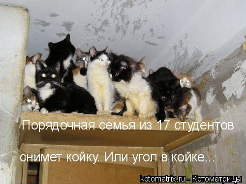 http://www.bugaga.ru/uploads/posts/2012-02/1329754719_kotomattrix_18.jpg