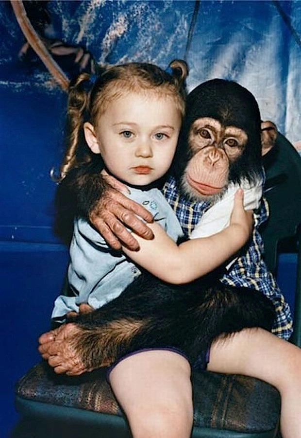 дети и животные приколы