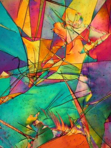 Обычные предметы, увеличенные под микроскопом