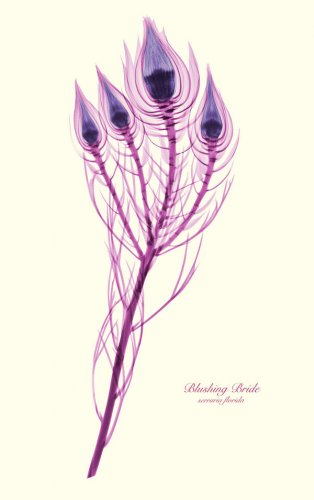 Рисунки цветов, созданные при помощи рентгена