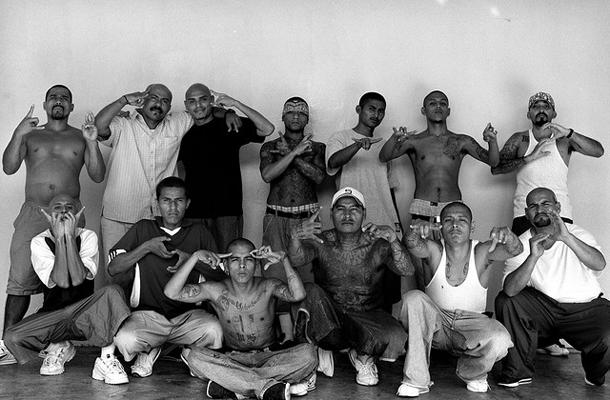 Картинки по запросу банды мексики фото