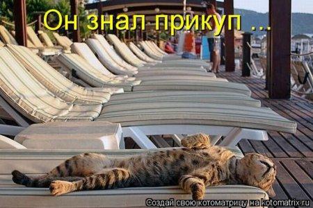 http://www.bugaga.ru/uploads/posts/2012-03/1330692160_kotomatrix_21.jpg