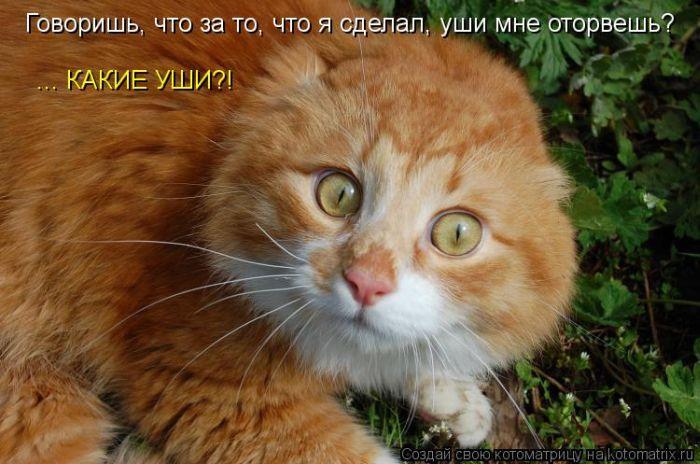 http://www.bugaga.ru/uploads/posts/2012-03/1330940386_27.jpg