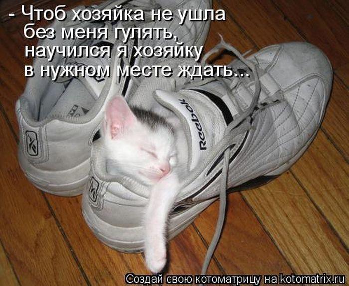 http://www.bugaga.ru/uploads/posts/2012-03/1332490339_9.jpg