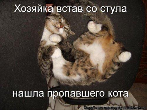 Позитивные котоматрицы (30 шт)