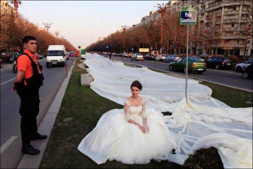 Свадебное платье с самым длинным шлейфом