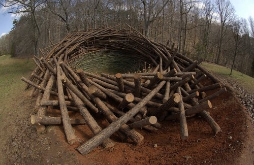 Гигантское гнездо Нильса-Удо
