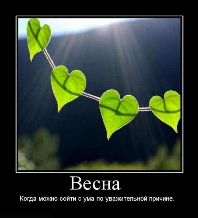 Сердце весна статусы
