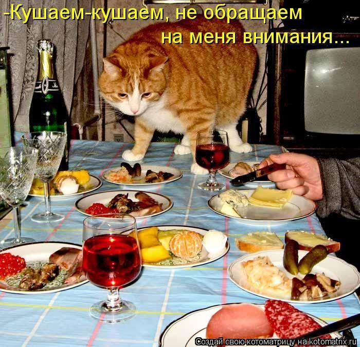 самых старинных, картинка за ужином съедай все в тарелке прикольная нас получится бисквитное