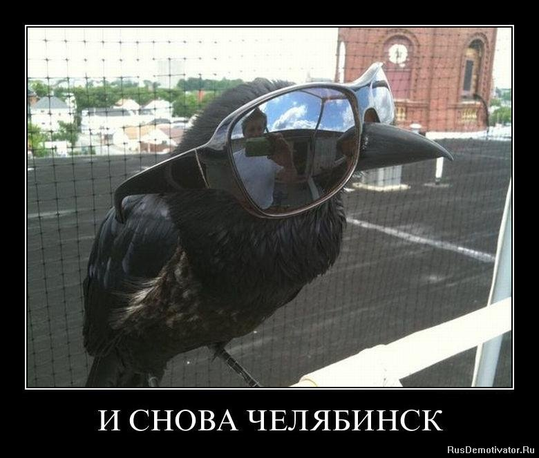 город приколов