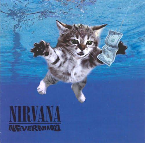 Музыкальные котята на обложках альбомов