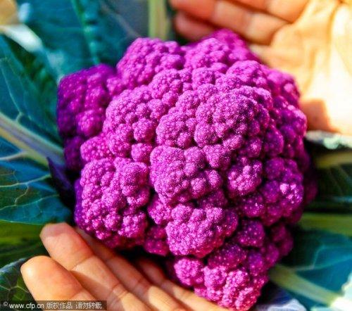 Удивительные овощи
