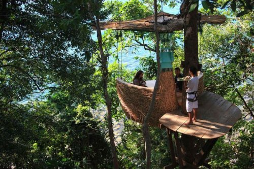 Ресторан на вершине дерева
