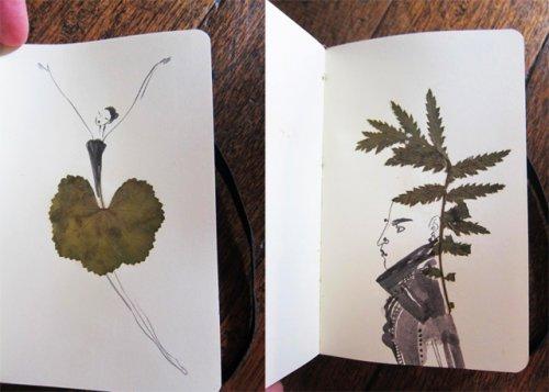 Рисунки из засохших листьев