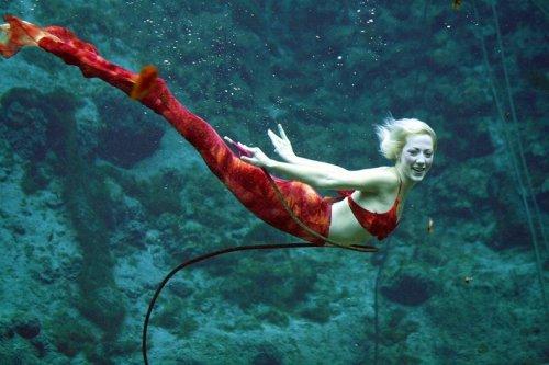 Настоящие русалки из Weeki Wachee Springs