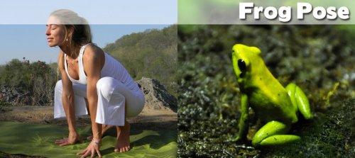 Йога в смешных фотографиях