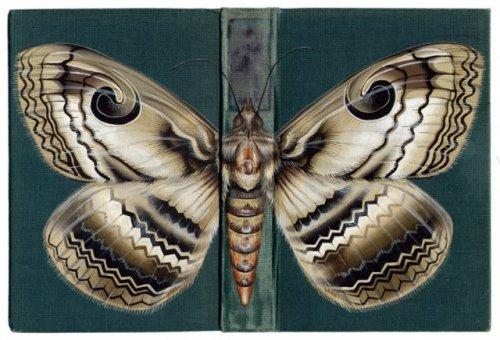 Насекомые на обложках книг