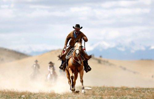 Лошади штата Монтана