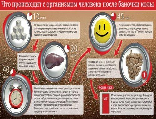 Как действует кола на организм