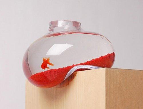 http://www.bugaga.ru/uploads/posts/2012-06/thumbs/1338540606_akvariumy-9.jpg