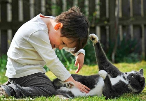 Кот помог больному мальчику