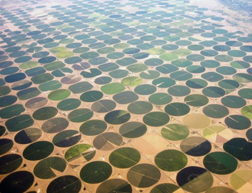 Необычные круглые поля