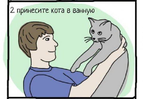 Как правильно купать кота))