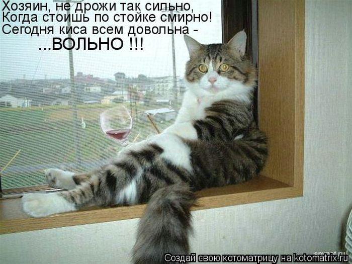 http://www.bugaga.ru/uploads/posts/2012-07/1342769982_kotomatricy-9.jpg