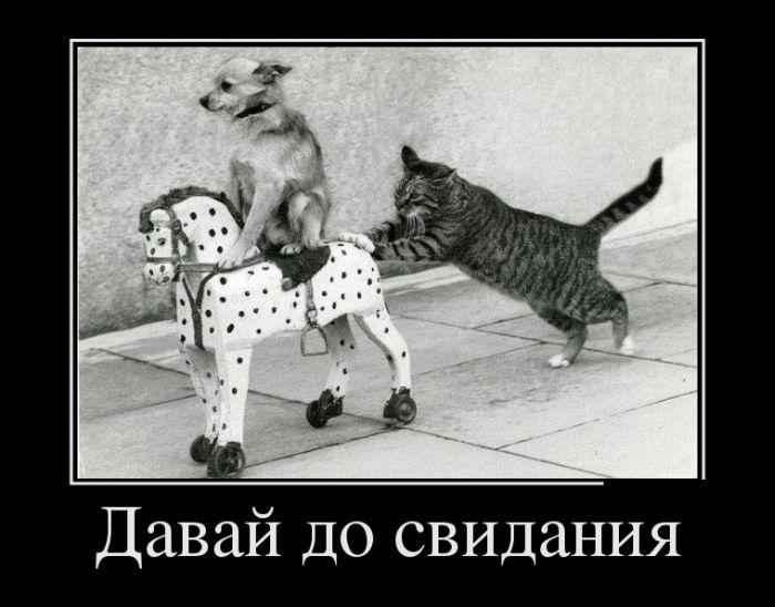 http://www.bugaga.ru/uploads/posts/2012-07/1343371519_demotivatory-10.jpg