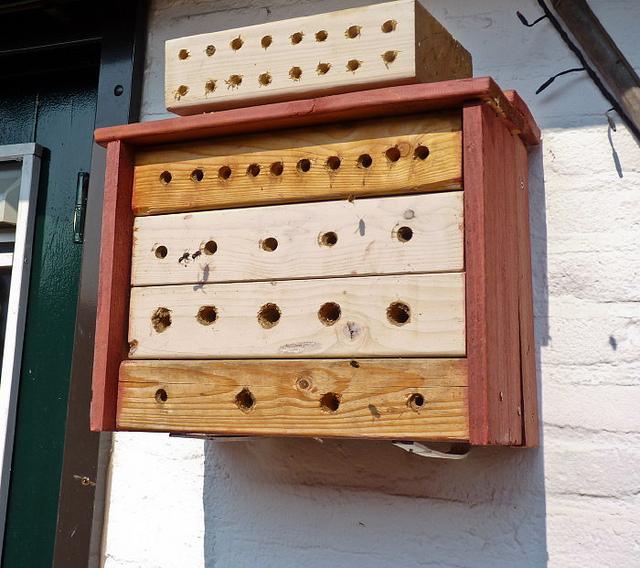 Домики для диких пчел своими руками 89
